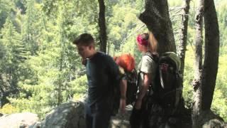 Army Dog Trailer