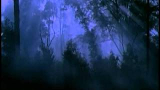 Jurassic Park III (2001) Teaser Trailer