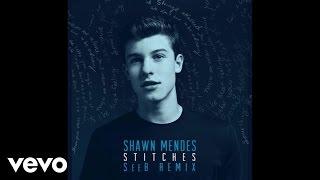 Shawn Mendes – Stitches SeeB Remix –