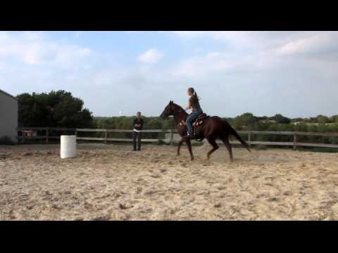 Doc Star Appeal - riding lesson - trotting barrels - Valley View Ranch