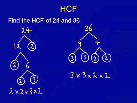 HCF LCM mathscasts