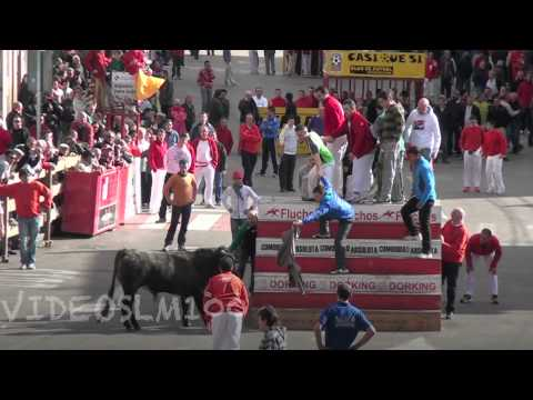 vacas calle ARNEDO 18 marzo  2012