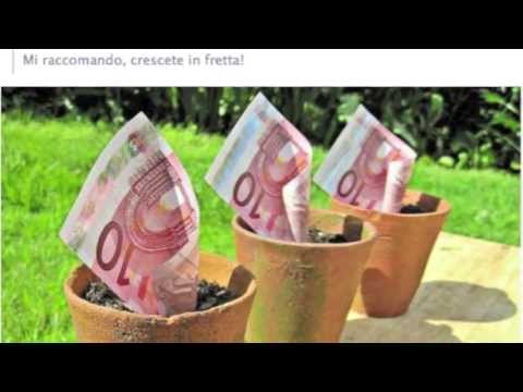 How You Can Grow Money - LITERALLY! (money inspirAction#134)