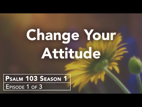 Do You Need an Attitude Realignment?