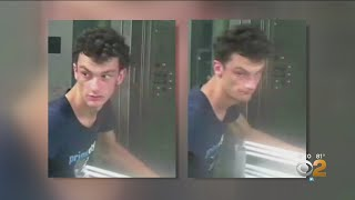 Police Find Person Of Interest In Subway Rice Cooker Scare