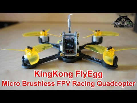 KingKong Fly Egg 130 Micro Brushless FPV Racing Quadcopter - UCpDJl2EmP7Oh90Vylx0dZtA