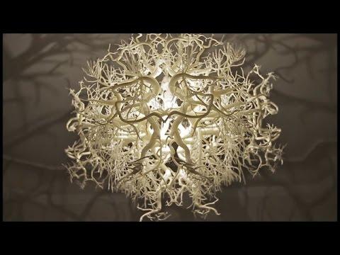 TOP 10 3D Printed Creations - UCoo0Bg4KMLADhe8M96fpWYQ