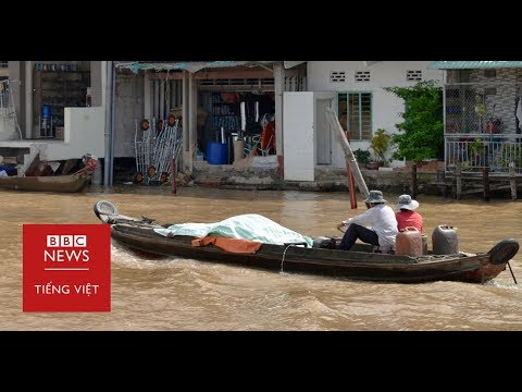 Vì sao bờ sông Cửu Long sạt lở, nuốt nhà? - BBC News Tiếng Việt