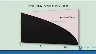 Elite Options Buying Tactics   Todd Salamone