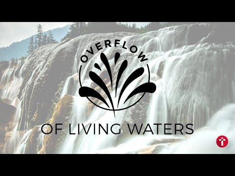 Overflow of living waters  Louis Kotz