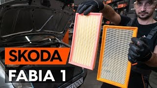 Come cambiare il filtro aria Skoda Fabia 6Y5