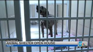 Pueblo Animal Shelter celebrates being officially back open for business