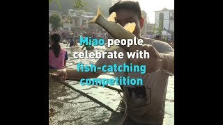 Miao people celebrate with fish-catching competition