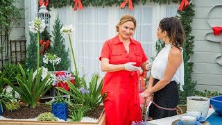 Maria, Shirley & Ken answer Viewer Mail - Home & Family