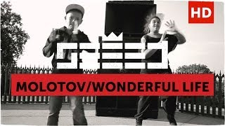 Molotov / Wonderful Life (official Video)