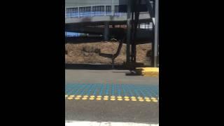 Sydney Trains Time-Lapse Mortdale to Hurstville