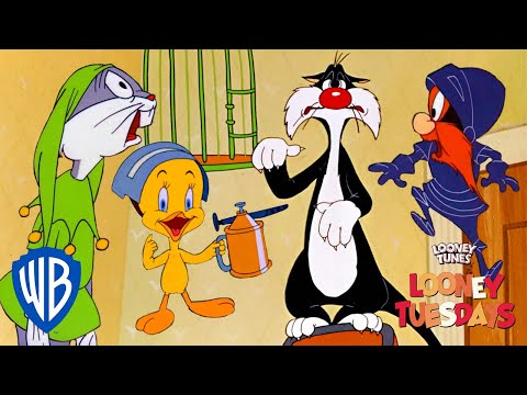 Looney Tuesdays | Our Oscar Winners! | Looney Tunes | WB Kids