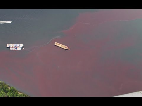 Breaking Blood Waters In Vancouver Canada