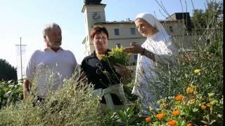 Klösterreich: Natur im Klostergarten
