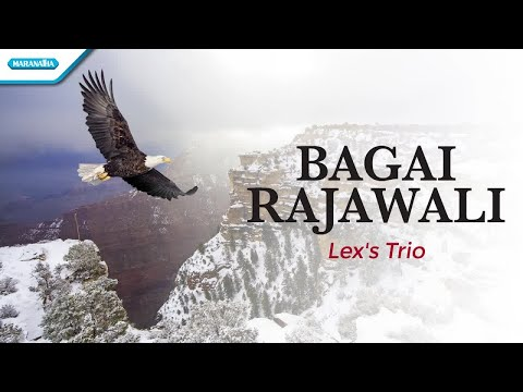 Bagai Rajawali - Lex's Trio (with lyric)
