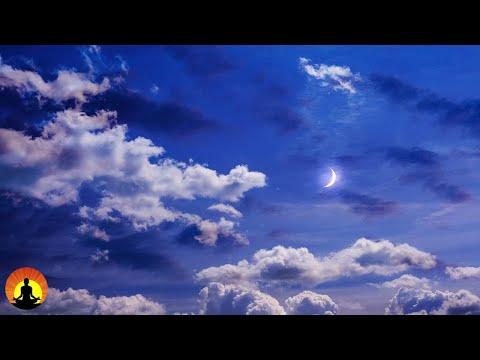 Worlds Most Beautiful Music By Florian Bur Fpvracerlt