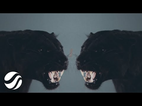 JustLuke - Losing Control (Official Music Video) - UCXvSeBDvzmPO05k-0RyB34w