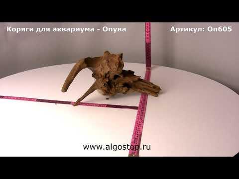 "Коряга для аквариума натуральная ""Опува"""