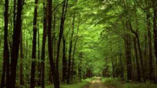 Vol Deeman - Colours (EDU Remix)