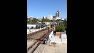 Sydney Trains Tangara between Kings Cross and Edgecliff