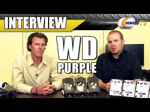 WD Purple Surveillance Storage Interview - Newegg TV - UCJ1rSlahM7TYWGxEscL0g7Q