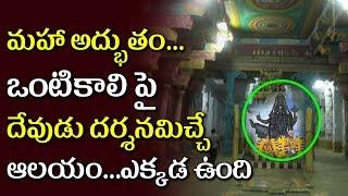 Thirukovilur Thiruvikrama Swamy Temple | God Stands On One Feet Only At Thiruvikrama Swamy Temple