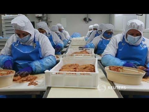 Pháp: Ngành sản xuất patê gan gặp khó khăn vì lệnh cấm ở Mỹ