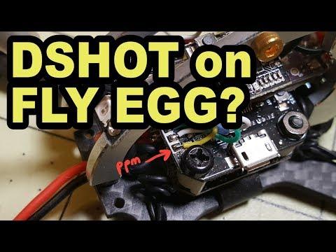 FLY EGG 100 & 130 DSHOT Tutorial 💛 - UCnJyFn_66GMfAbz1AW9MqbQ