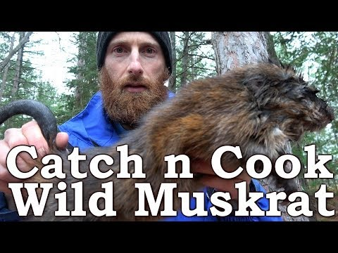 Cooking and Eating WILD MUSKRAT (Strange)! | BEST MEAT EVER with CHARCUTERIE?!? | Fire, Pumpkin Pie