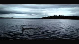 Pêche en Irlande - Juin 2014
