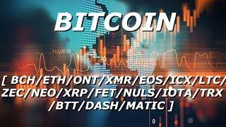 Обзор криптовалюты BITCOIN + TOP 15 - [31/05/2019]