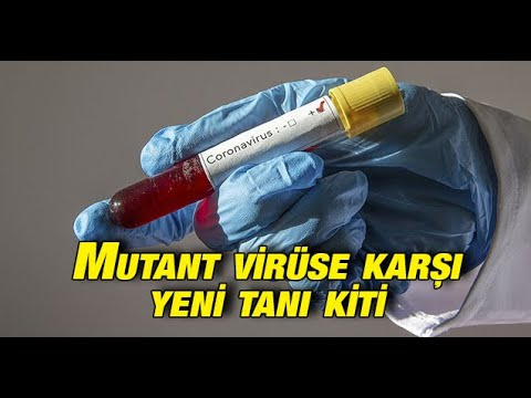 Mutant virüse karşı yeni tanı kiti