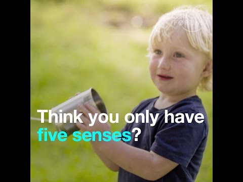 Think you only have five senses?   Wrong   you may have 33