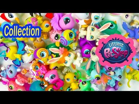 LPS Collection Tour Haul Video Littlest Pet Shop Bunny Rabbits Bugs Birds Cookieswirlc Part 2 - UCelMeixAOTs2OQAAi9wU8-g