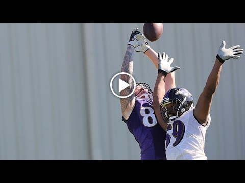 Minicamp Top Play: Maxx Williams Skies For Juggling TD Catch | Baltimore Ravens