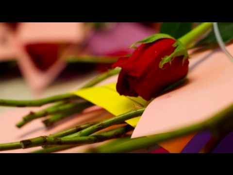 Valentine rose sale spreads love on campus -Estella Lippi