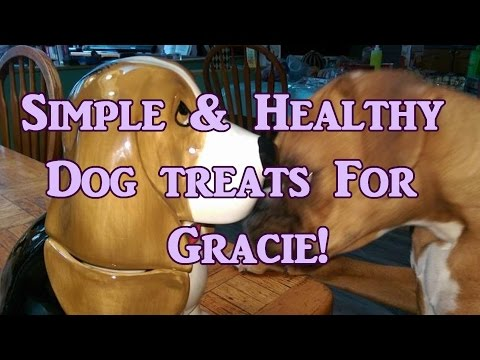 Healthy Homemade Treats For Your Dog!