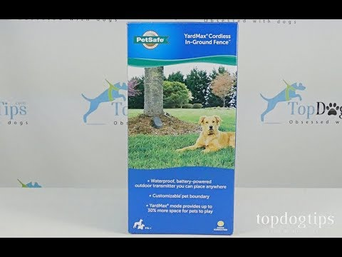 PetSafe YardMax In Ground Dog Fence Review