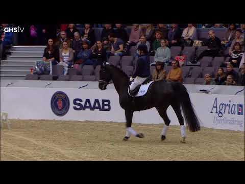 Gothenburg Horse Show - Clinic med Patrik K och Felicia G