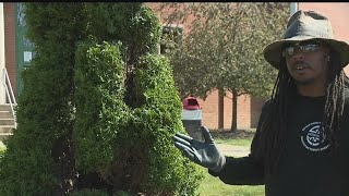 Chaney High School grad uses topiary talent to beautify alma mater