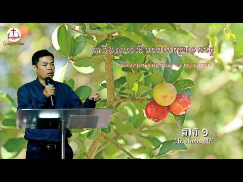 ( )  You will know the tree by its fruit (Part 1)
