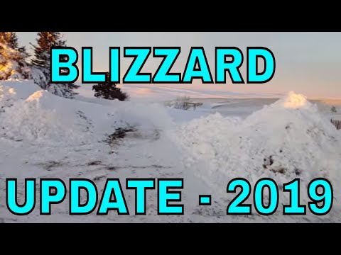 March 2019 Blizzard Update - Reality Survival Ranch