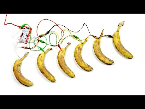You've Never Seen Bananas Do This...