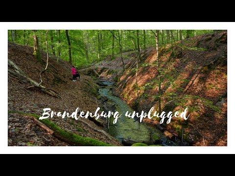 Brandenburg unplugged: Wandern im Herbst Brandenburg