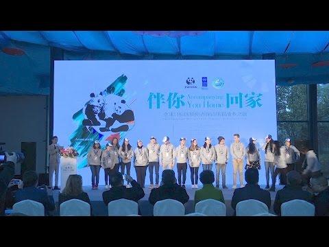 UNDP's Global Goals Champions meet the Panda Ambassadors